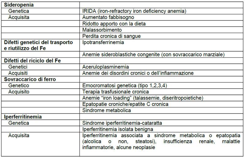 Il-bilancio-del-Ferro-e-sua-valutazione-poliambulatorio-san-giorgio